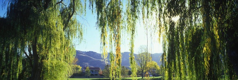 Hidden Valley Country Club – bizSPOTLIGHT
